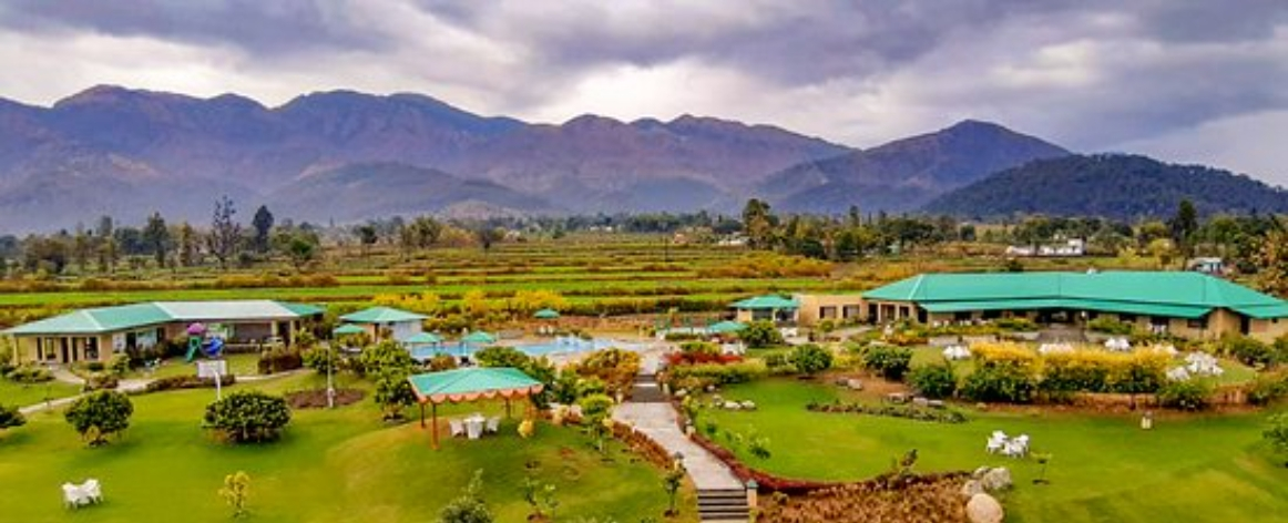 Jim Corbett Hotels, Hotels in Jim Corbett