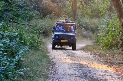 Corbett Jeep Safari