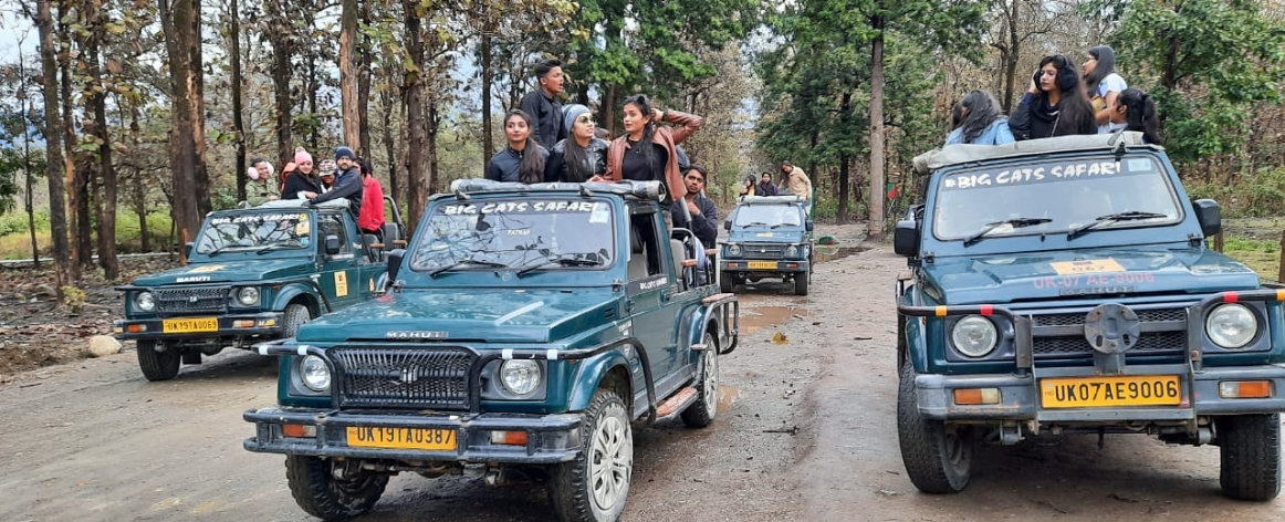 Corbett Jeep Safari Online Booking. Jeep Safari in Jim Corbett