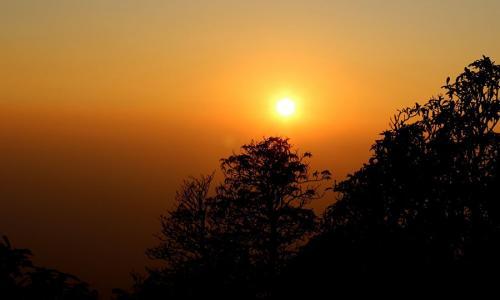 Bagheera Jungle Retreat