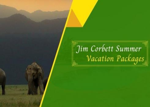Jim Corbett summer vacation packages