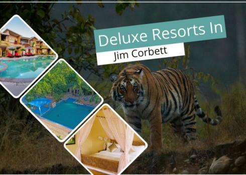 Deluxe Resorts In Jim Corbett