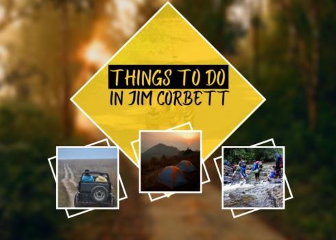 Things to do in Jim Corbett