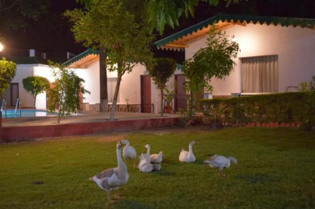 Corbett Paradiso Resort Lawn