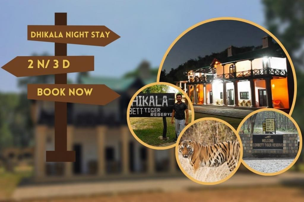 Dhikala Night Stay